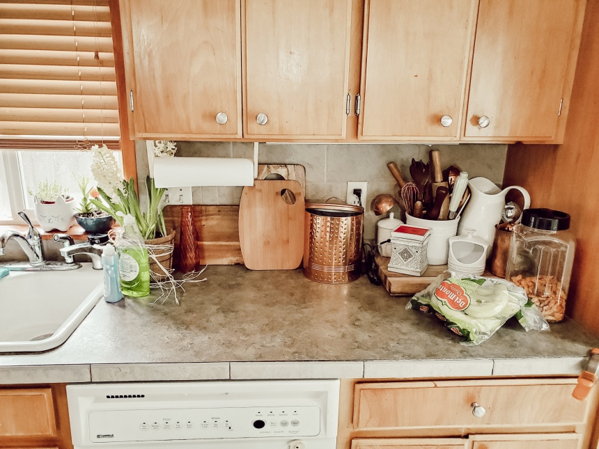 Finds and Dines DIY Kitchen Remodel (5)