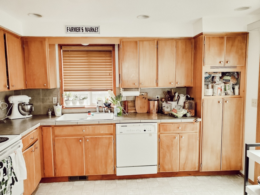 Finds and Dines DIY Kitchen Remodel (3)