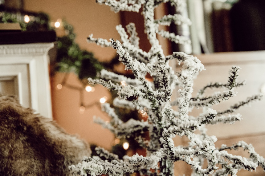 Finds and Dines Holiday Home Tour 5-2